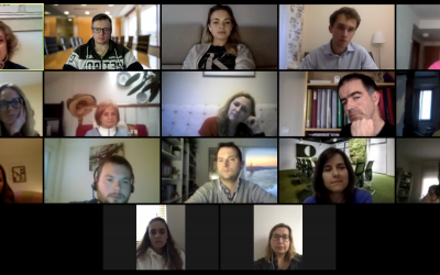 """The first online meeting of the project """"PPM Speaking Pole""""."""
